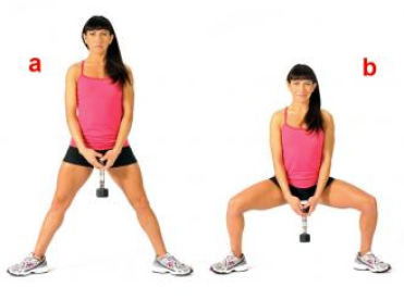 Image result for Plié Dumbbell Squats