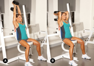 Seated Overhead Tricep ExtensionSeated Tricep Extension