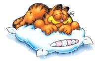 garfield-sleep